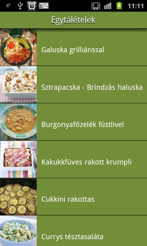 Mit főzzek ma? Receptajánló.- screenshot