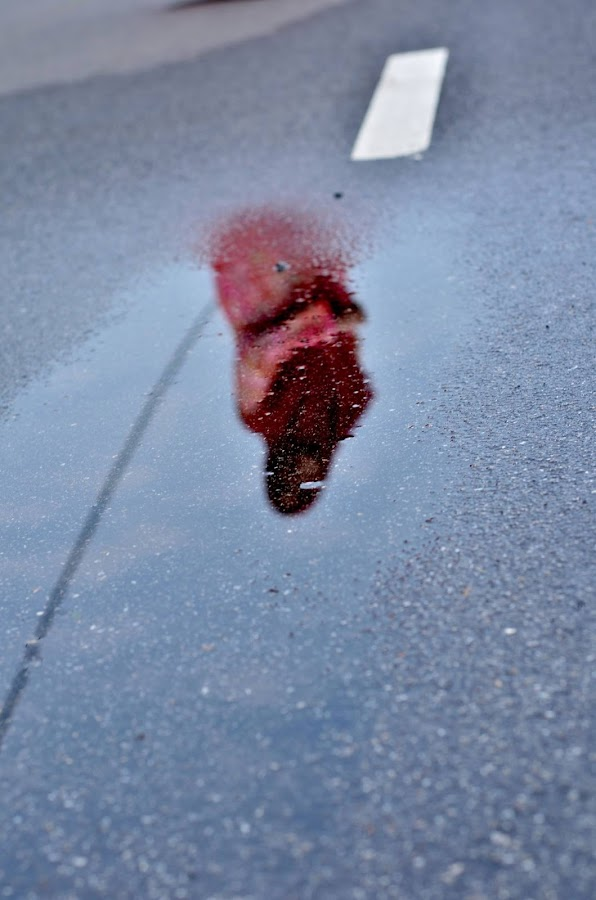 Reflection by Nurul Najwa - Novices Only Street & Candid (  )