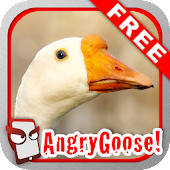 Angry Goose Free!