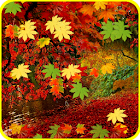 Autumn Leaves Falling LWP icon