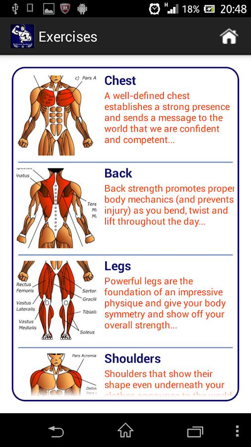 Week Workout Regimen To Build Muscle