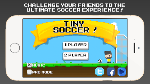 Tiny Soccer - Physics Ball