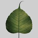 Dhammaloka logo