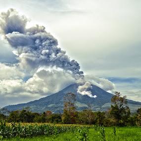 Sinabung Eruption by Kriswanto Ginting's - Landscapes Mountains & Hills ( magma, north sumatra, eruption, sinabung, karoland,  )