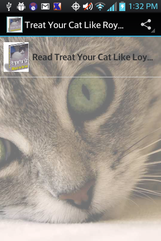 Treat Your Cat Like Royalty