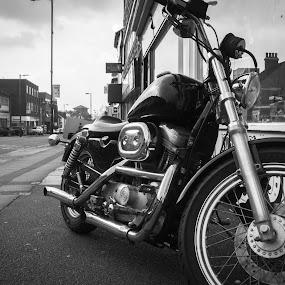 Harley by Derek Robinson - City,  Street & Park  Street Scenes ( nikon 1 j2 harley davidson )