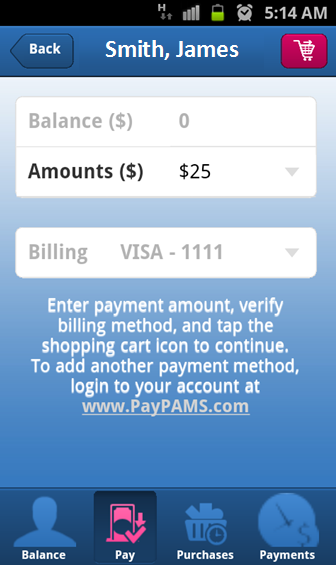 PayPAMS - screenshot
