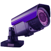 Viewer for Lorex IP cameras