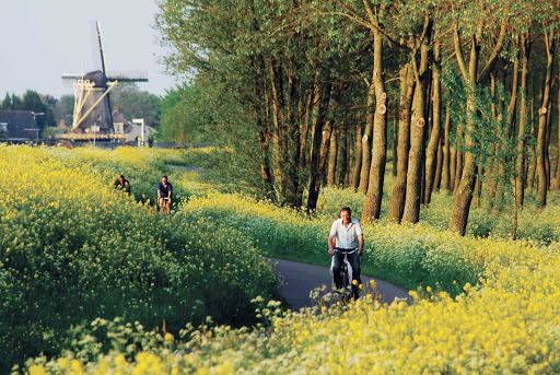 Cycling near Delft, between The Hague and Rotterdam in the Netherlands.