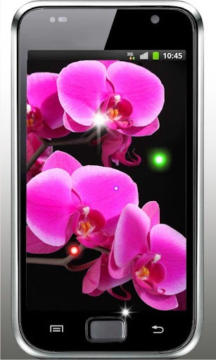 Diamond Orchide live wallpaper