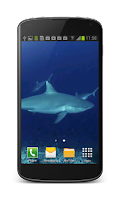 Screenshot of Shark Video Wallpaper Free