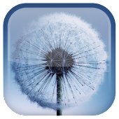 Free Galaxy S3/S5 Live Wallpaper APK for Windows 8