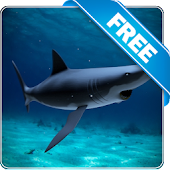 Shark attack lwp Free