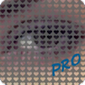 Photo Love PRO icon