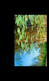 Claude Monet- screenshot thumbnail