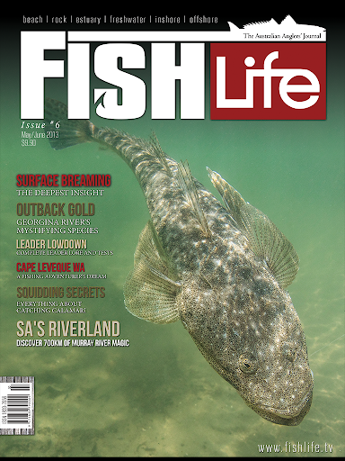 【免費新聞App】Fishlife-APP點子