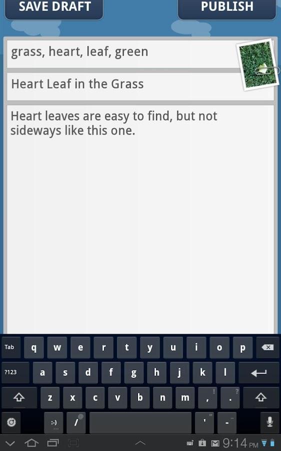 Moggler - screenshot