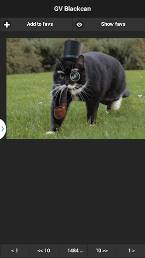 GifViewer Blackcan