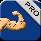 Men's Biceps Workout Pro