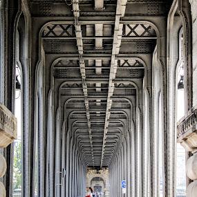 Pont de Bir-hakeim, Paris by Charles Ong - Buildings & Architecture Architectural Detail ( pont de bir-hakeim, , bridge )