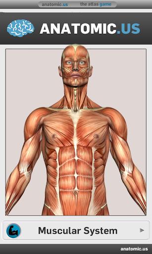 肌肉解剖遊戲精簡版