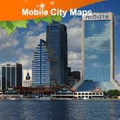 Jacksonville Street Map