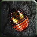 Roach Rage HD icon
