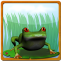 Frog Maritime Adventure icon
