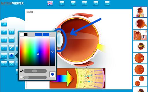【免費醫療App】NATOM VIEWER OP.05-APP點子