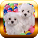Small Dogs Puzzle & Wallpapers icon