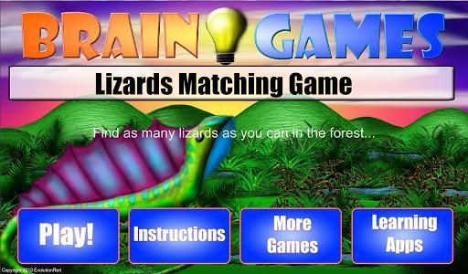 Lizards Matching Game