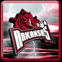Arkansas Razorbacks Theme logo
