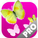 Butterflies Memory Game PRO icon