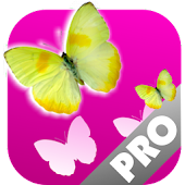 Butterflies Memory Game PRO