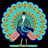 Myanmar Web Media