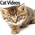 Funny Cat Videos icon
