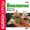 Аудиокурс. Биология. 10 кл. icon