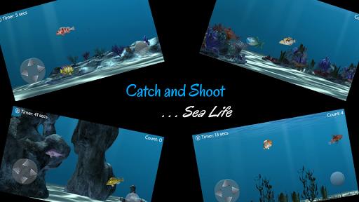 Catch N Shoot 2