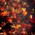 Autumn Live Wallpaper HD 2 icon