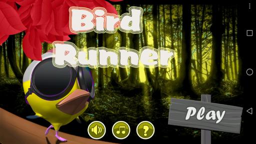 Jungle Castle Bird Run