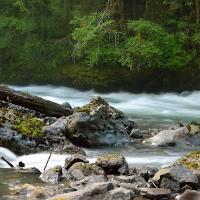 Nooksack river flow! by Todd Ivanhoe - Landscapes Waterscapes