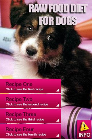 Raw Food Diet Recipes For Dogs