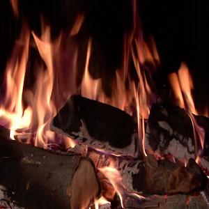 Fireplace of Love 娛樂 App Store-癮科技App