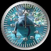 Manatee 3 Analog Clock