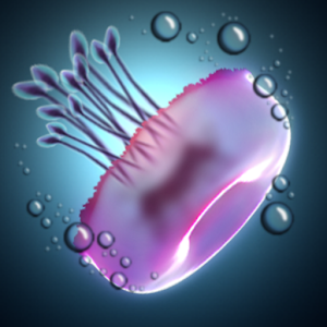 Jelly Bubbles Free for PC and MAC