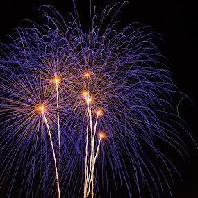 Blue Fireworks by Daniel MV - Abstract Fire & Fireworks ( holiday, lights, explosion, fireworks, night, celebration, day, light, city,  )