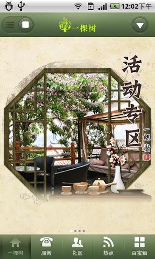 丽江客栈•一棵树