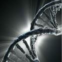 Live Wallpaper - DNA icon