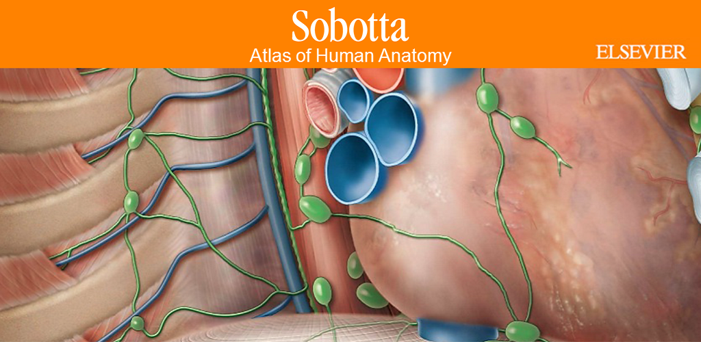 Download Sobotta Anatomy Atlas Apk Latest Version App For Android