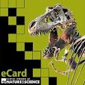 DMNS eCard v1 icon
